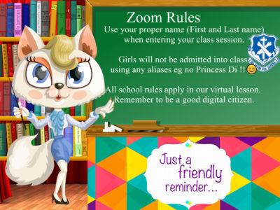 Zoom Rule 6